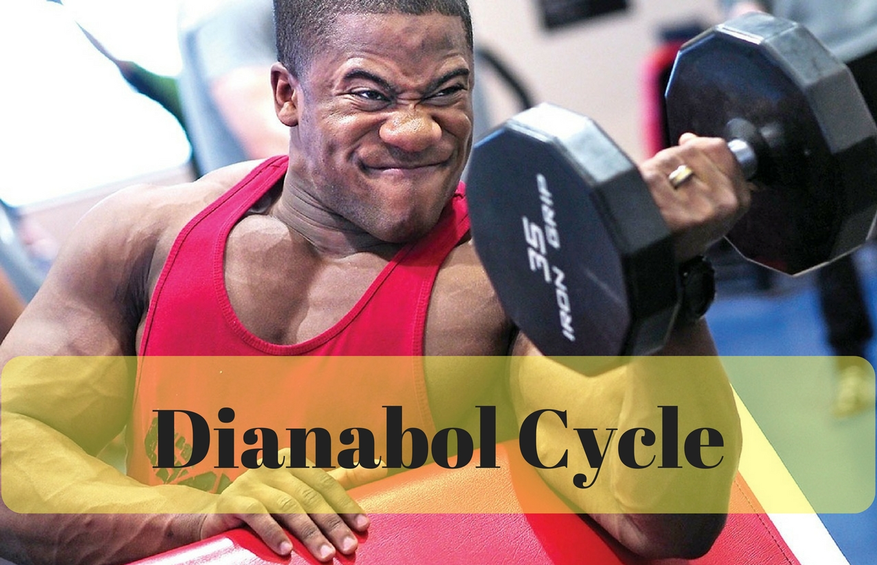 dianabol cycle